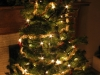 Christmas_tree_at_night