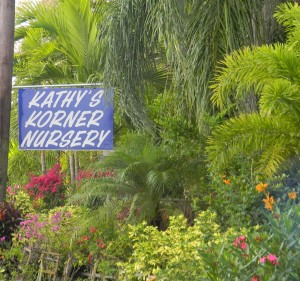 Welcome To Kathyu0027s Korner Nursery, Inc. U0026 Tree Farm